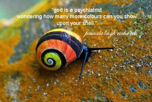 Rainbow Snail pamela quote