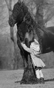 girl hugging fresian horse