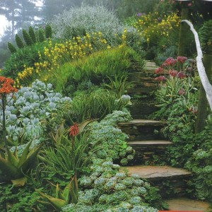 Green garden pathway