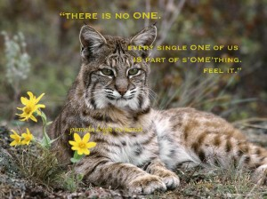 Linx Flower Pamela Quote