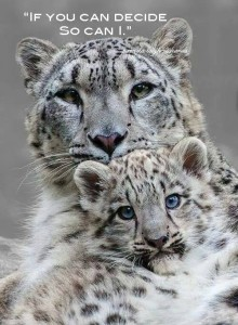 Quote.pamela.Snow Leopard and baby