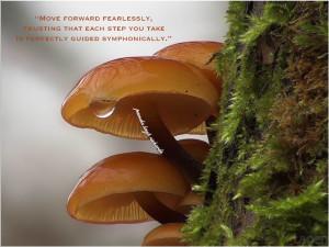 Pamela-quote-mushroom-golden-glow