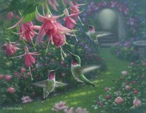 hummingbirdhaven