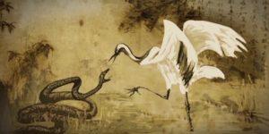 white-bird-softer-path